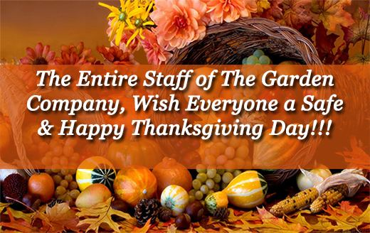 Happy Thanksgiving Day